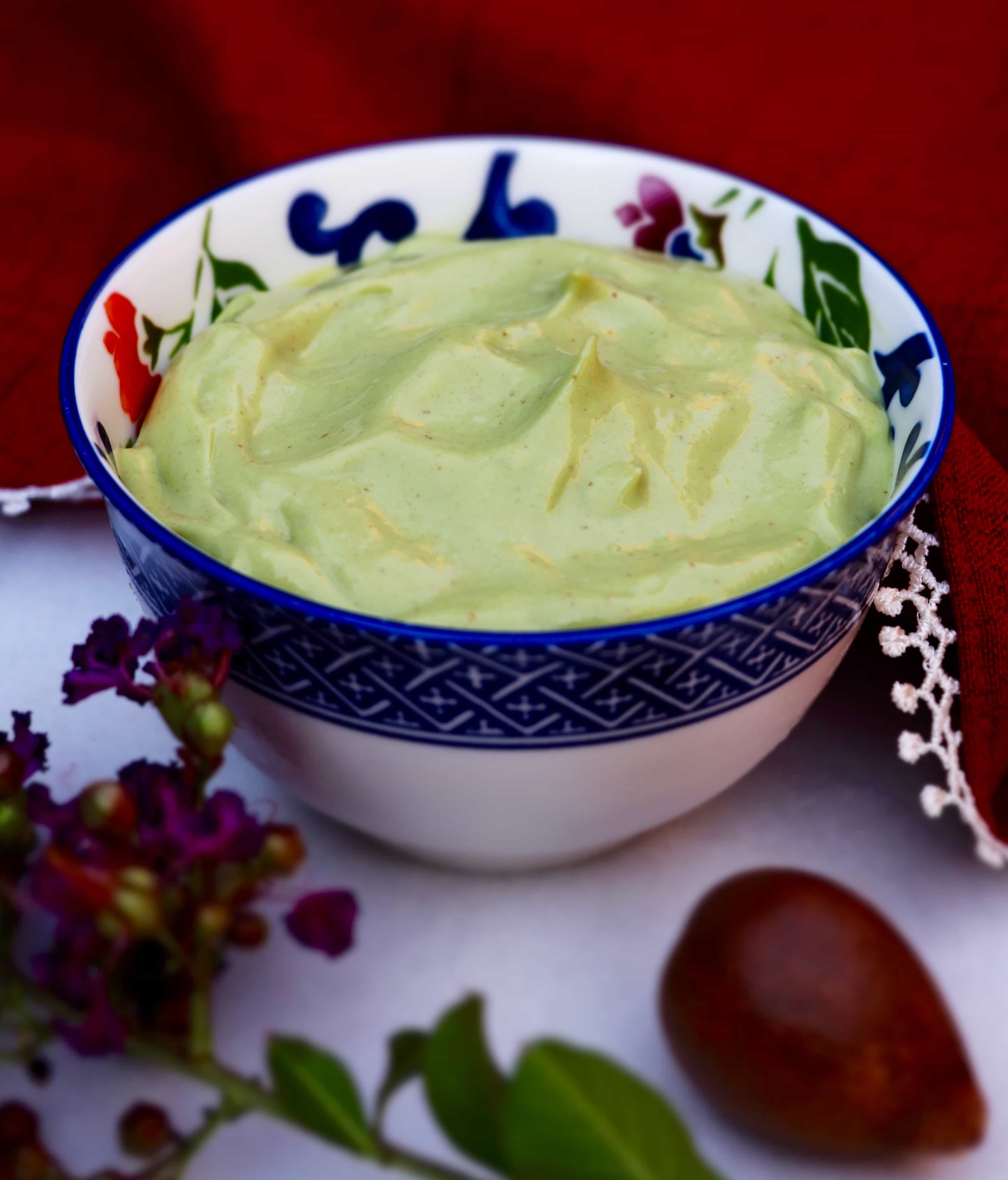 creamy avocado pudding
